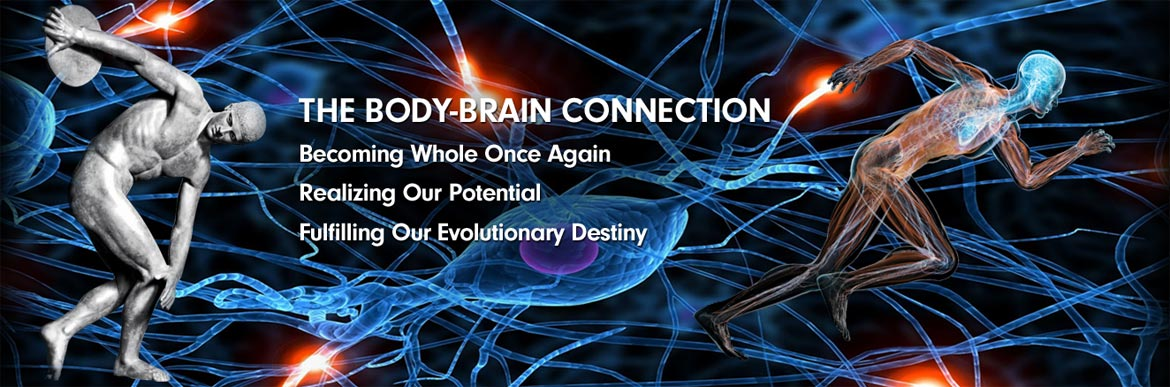 The Body-Brain Connection